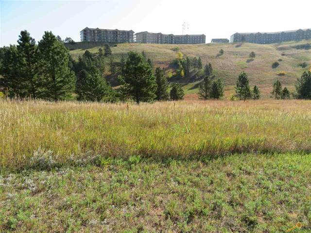2316 Golden Eagle Dr, Rapid City, SD 57702 (MLS #151479) :: Dupont Real Estate Inc.