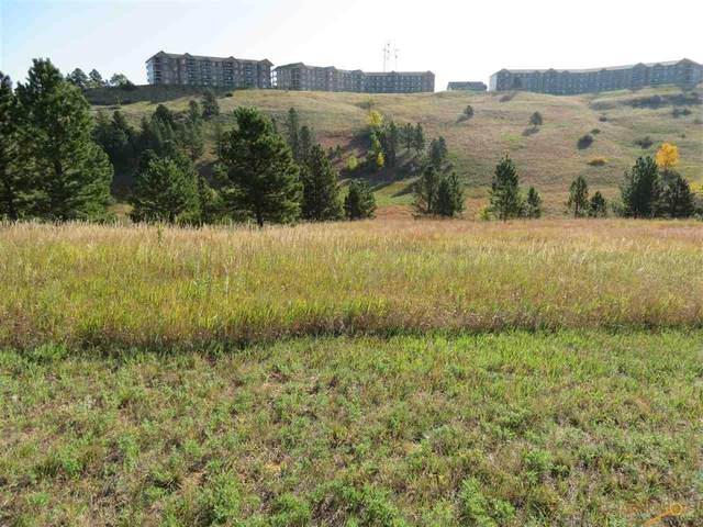 2310 Golden Eagle Dr, Rapid City, SD 57702 (MLS #151480) :: Dupont Real Estate Inc.