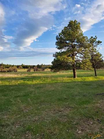 TBD 207TH, Sturgis, SD 57769 (MLS #151668) :: Dupont Real Estate Inc.