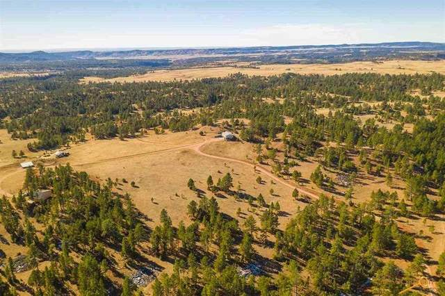11766 Ridge Rd, Hot Springs, SD 57747 (MLS #151849) :: Black Hills SD Realty