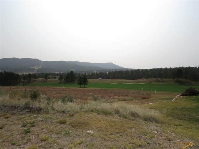 TBD Meadowlark Dr, Hot Springs, SD 57747 (MLS #152381) :: Heidrich Real Estate Team