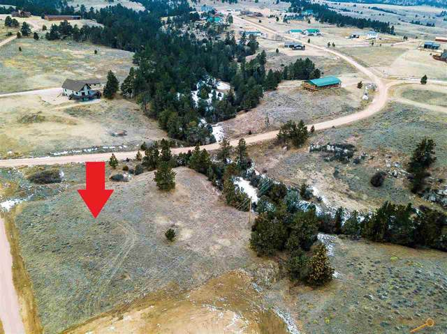 TBD Waters Edge Blvd, Hot Springs, SD 57747 (MLS #152386) :: VIP Properties