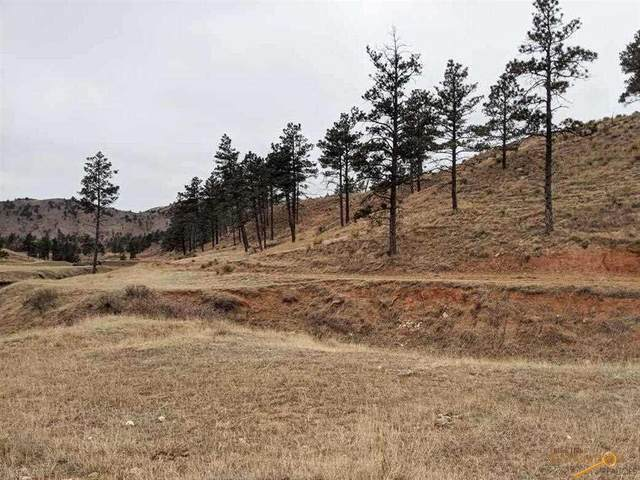 TBD Settlers Gulch Road, Hot Springs, SD 57747 (MLS #152496) :: Heidrich Real Estate Team