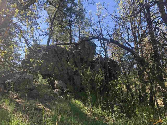 Tract Campfire Three Meadows Rd, Keystone, SD 57751 (MLS #152649) :: Black Hills SD Realty