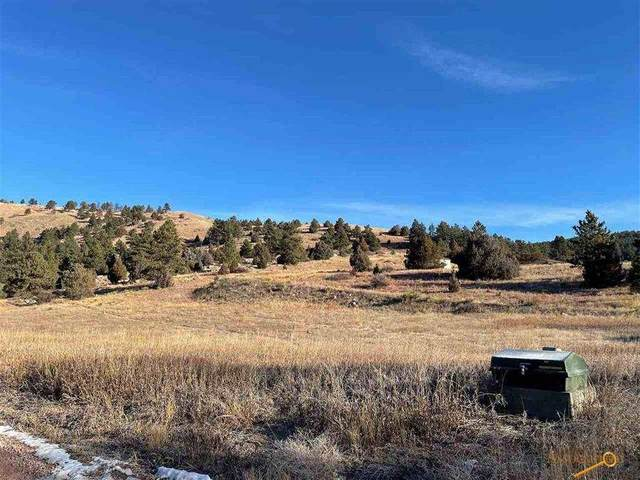 Lot 34 Todd Dr, Hot Springs, SD 57747 (MLS #152736) :: Christians Team Real Estate, Inc.