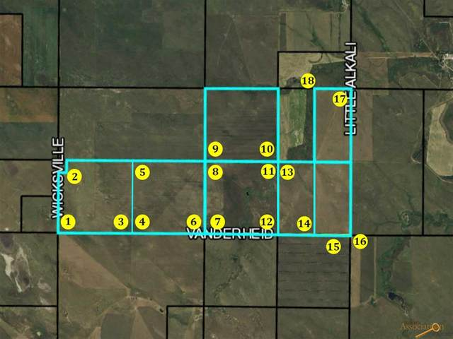 TBD 173RD AVE, Owanka, SD 57767 (MLS #152812) :: Black Hills SD Realty
