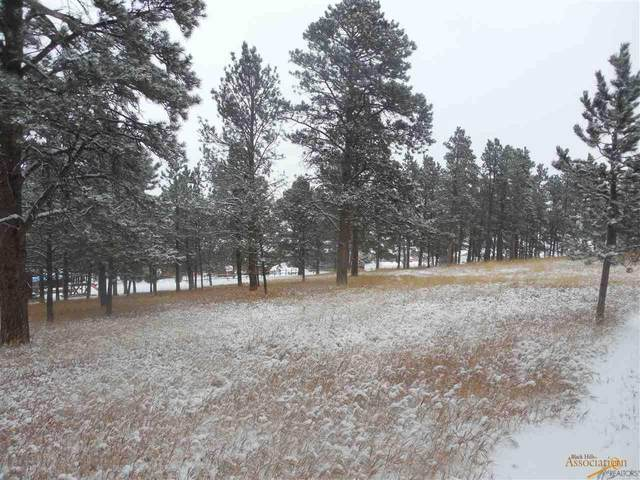 tbd Waldan Ln, Black Hawk, SD 57718 (MLS #152895) :: Christians Team Real Estate, Inc.