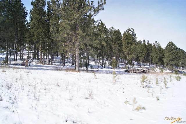 tbd Renegade Pass, Custer, SD 57730 (MLS #153068) :: Heidrich Real Estate Team