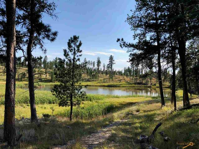 TBD Willow Creek, Custer, SD 57730 (MLS #153138) :: Black Hills SD Realty