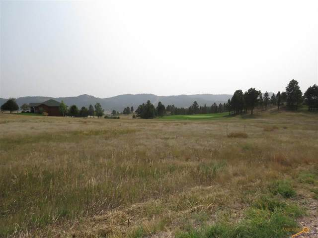 TBD Meadowlark Dr, Hot Springs, SD 57747 (MLS #153174) :: Black Hills SD Realty