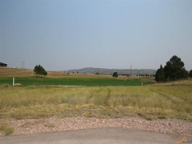 TBD Oriole Dr, Hot Springs, SD 57747 (MLS #153176) :: Black Hills SD Realty