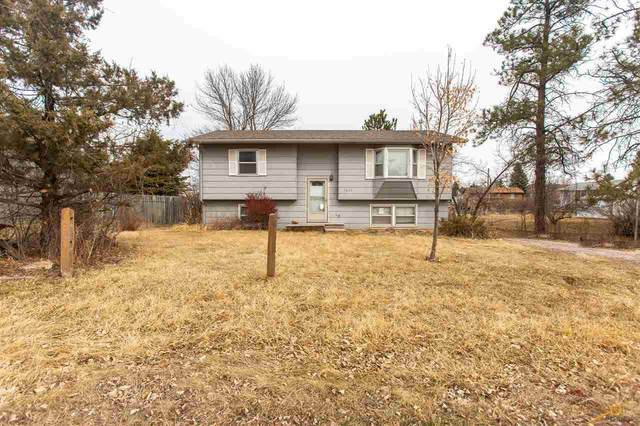 7877 Terry Ave, Piedmont, SD 57718 (MLS #153516) :: Heidrich Real Estate Team