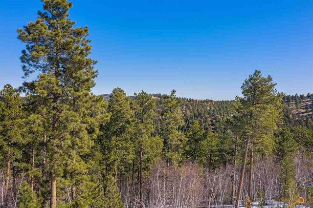TBD Other, Lead, SD 57754 (MLS #153575) :: Black Hills SD Realty