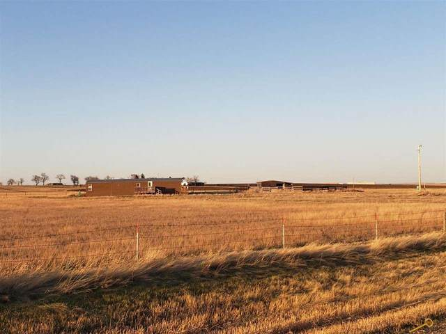 15238 Bend Rd, Box Elder, SD 57719 (MLS #153615) :: Heidrich Real Estate Team