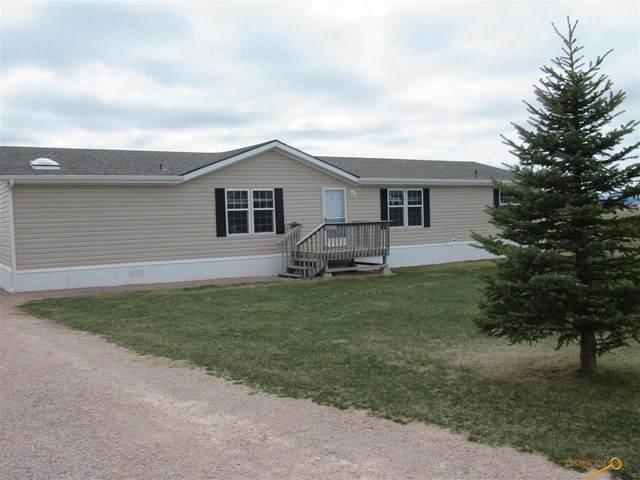 14765 Mustang Ln, Rapid City, SD 57703 (MLS #153765) :: Christians Team Real Estate, Inc.