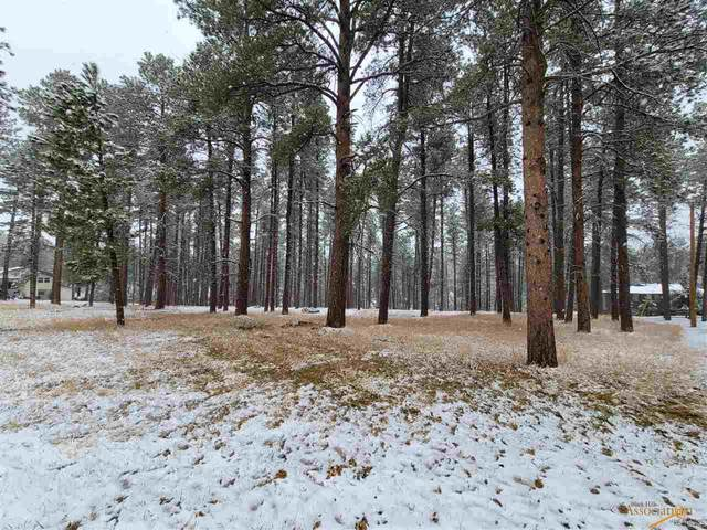TBD Forest Rd, Rapid City, SD 57702 (MLS #153776) :: Christians Team Real Estate, Inc.