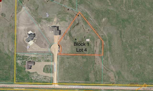 TBD Other, Wall, SD 57790 (MLS #153869) :: Black Hills SD Realty