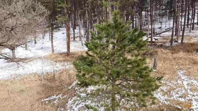 BLK 7 LOT 7 & 8 Other, Keystone, SD 57751 (MLS #153886) :: Dupont Real Estate Inc.