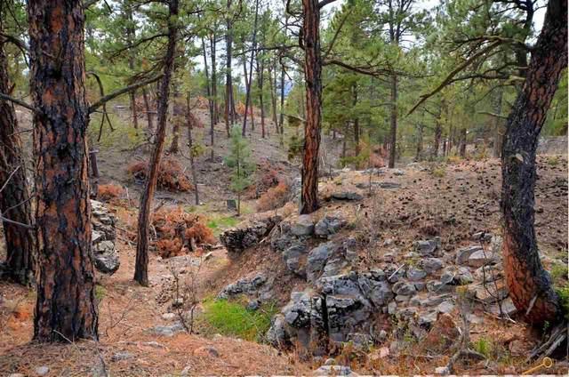 TBD Highlands Rd, Edgemont, SD 57735 (MLS #154038) :: Dupont Real Estate Inc.