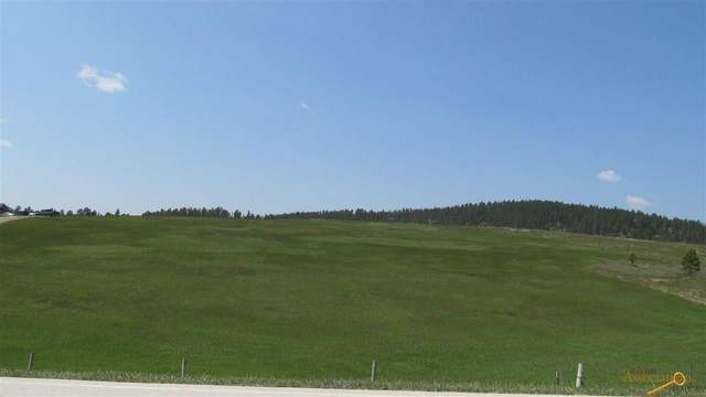 TBD Deerfield Rd, Hill City, SD 57745 (MLS #154170) :: Heidrich Real Estate Team