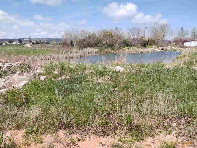 tbd Other, Black Hawk, SD 57718 (MLS #154270) :: Black Hills SD Realty