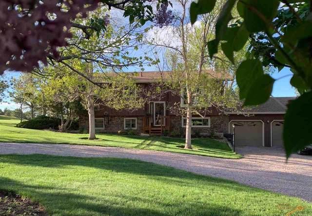 10610 N High Meadows Dr, Black Hawk, SD 57718 (MLS #154441) :: Heidrich Real Estate Team