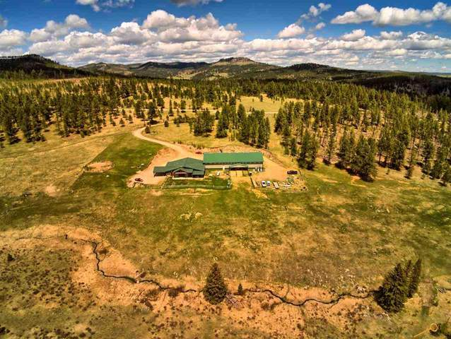 11061 Castle Creek Rd, Hill City, SD 57745 (MLS #154590) :: Dupont Real Estate Inc.