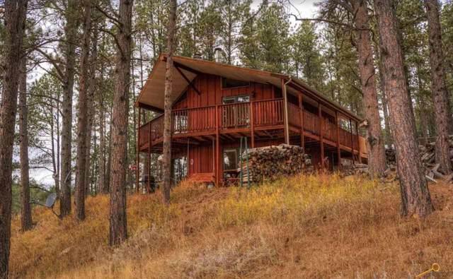 22487 Alpine Acres, Deadwood, SD 57732 (MLS #154595) :: Heidrich Real Estate Team