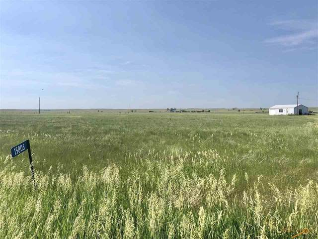 15806 Lower Spring Creek Rd, Hermosa, SD 57744 (MLS #154755) :: Dupont Real Estate Inc.