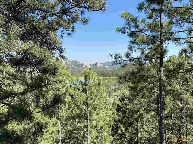24975 Tanglewood Drive, Custer, SD 57730 (MLS #154794) :: Heidrich Real Estate Team