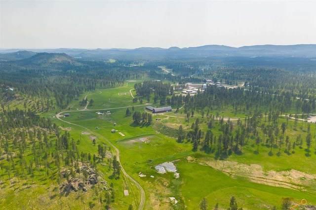 Lot 21 Other, Custer, SD 57730 (MLS #154831) :: Heidrich Real Estate Team