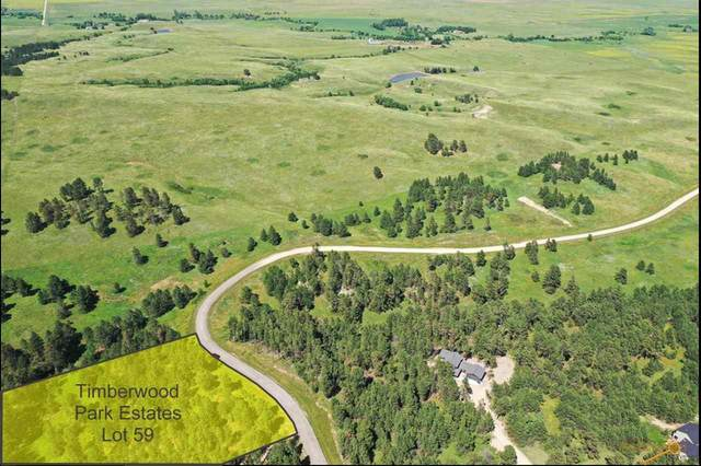13499 Frontier Loop, Piedmont, SD 57769 (MLS #154954) :: Heidrich Real Estate Team