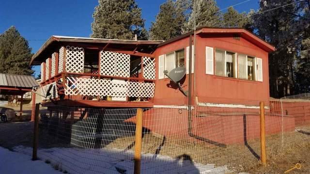 12080 Big Pine Rd, Custer, SD 57730 (MLS #154983) :: Heidrich Real Estate Team