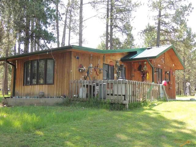 12210 Other, Custer, SD 57730 (MLS #155088) :: Heidrich Real Estate Team