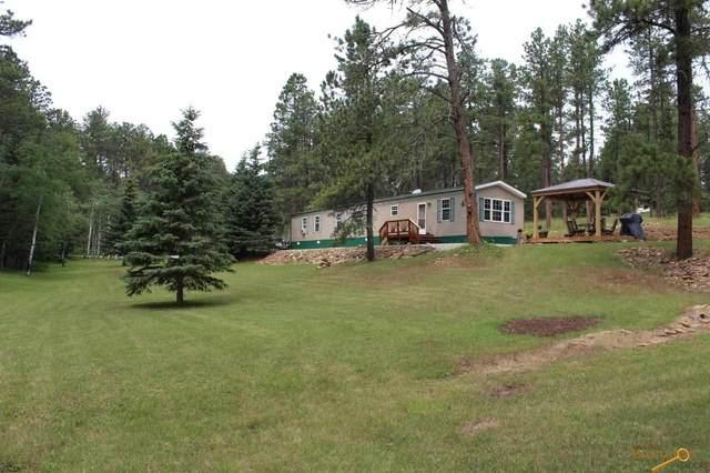 21850 Big Elk Place, Nemo, SD 57759 (MLS #155174) :: Heidrich Real Estate Team