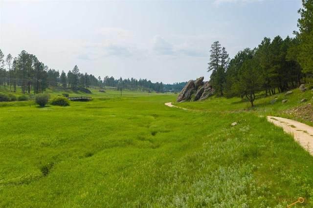 Tract 11 Sidney Trl, Custer, SD 57730 (MLS #155219) :: Heidrich Real Estate Team
