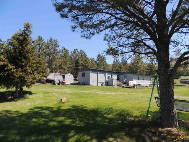 28304 W Flag Pole Rd, Hot Springs, SD 57747 (MLS #155273) :: Dupont Real Estate Inc.