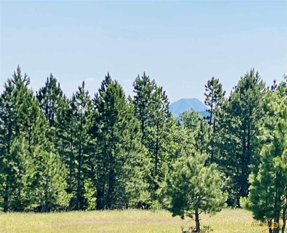 tbd tract 3 Oak, Whitewood, SD 57793 (MLS #155362) :: Christians Team Real Estate, Inc.