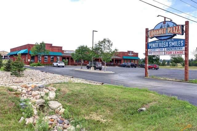 5955 Mt Rushmore Rd, Rapid City, SD 57701 (MLS #155370) :: Christians Team Real Estate, Inc.