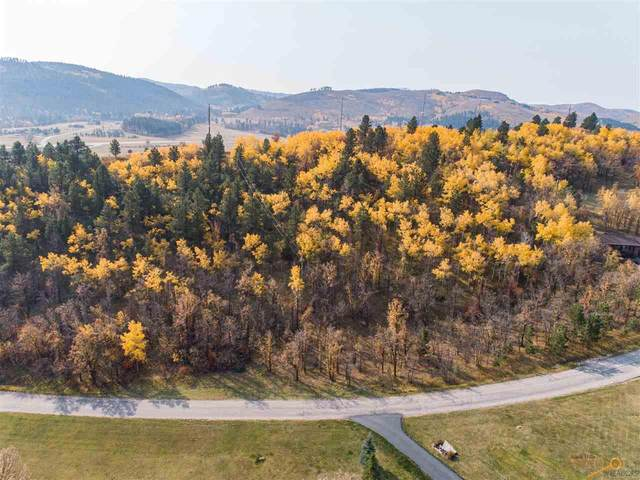 TBD Ranch Rd, Deadwood, SD 57732 (MLS #155471) :: Dupont Real Estate Inc.
