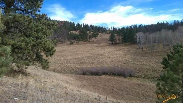 TBD Gillette Prairie Rd, Hill City, SD 57745 (MLS #155533) :: Heidrich Real Estate Team