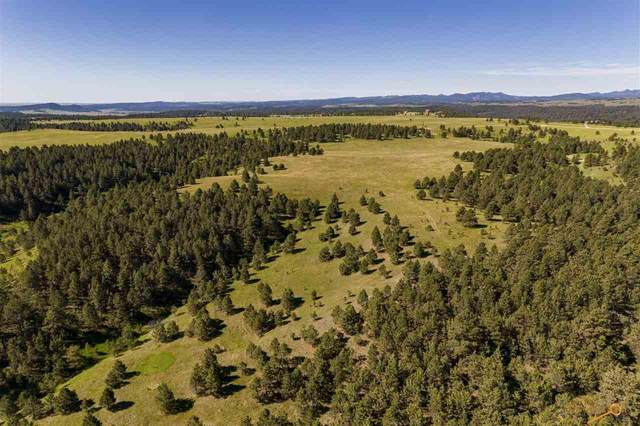 TBD Sudbury Ranch Rd, Rapid City, SD 57702 (MLS #155641) :: Heidrich Real Estate Team