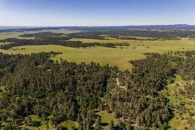 TBD Sudbury Ranch Rd, Rapid City, SD 57702 (MLS #155652) :: Heidrich Real Estate Team