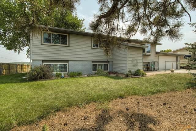 14990 W Hills View Dr, Piedmont, SD 57769 (MLS #155808) :: VIP Properties