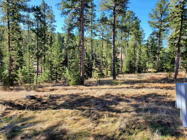 Lot 24 Other, Lead, SD 57754 (MLS #155937) :: Christians Team Real Estate, Inc.