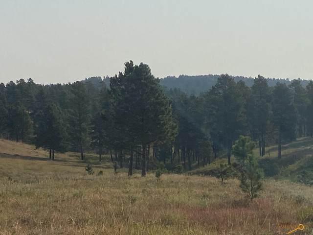 24288 Rushmore Ranch Rd, Keystone, SD 57751 (MLS #156061) :: Heidrich Real Estate Team
