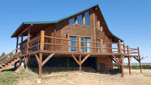 13790 Borglum Rd, Keystone, SD 57751 (MLS #156083) :: VIP Properties