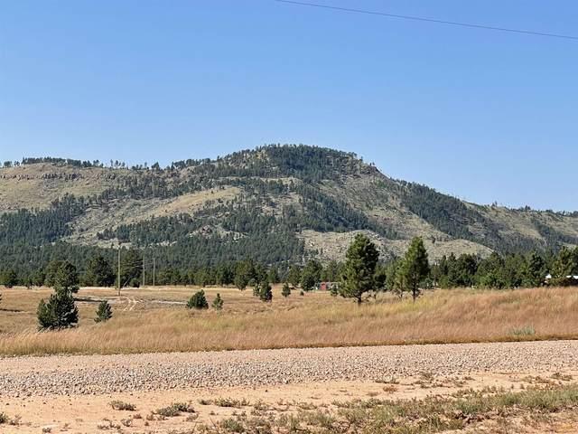 TBD Mountain Dr, Custer, SD 57730 (MLS #156228) :: Dupont Real Estate Inc.
