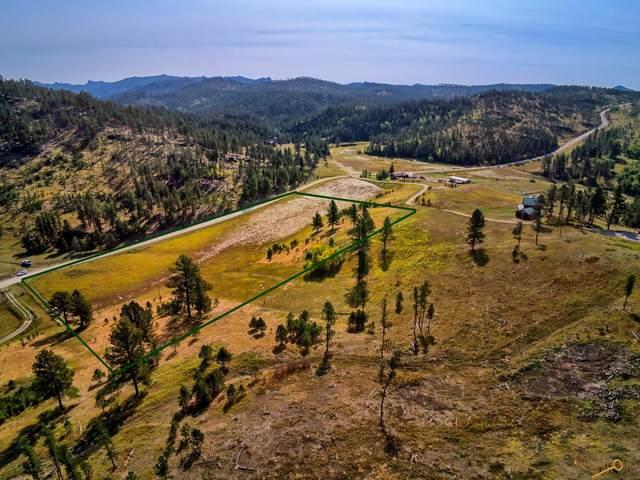 24435 Medicine Mountain Rd, Custer, SD 57730 (MLS #156252) :: VIP Properties