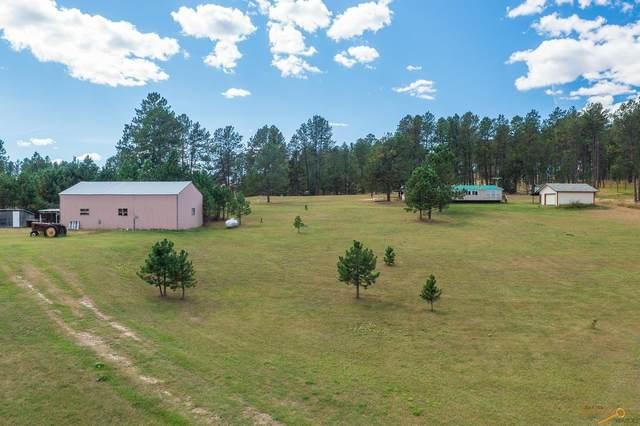 25305 Hwy 385, Custer, SD 57730 (MLS #156292) :: Heidrich Real Estate Team